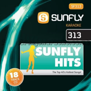 Karaoke Korner - Sunfly Karaoke Hits Vol 313
